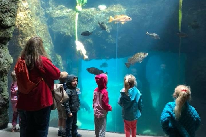 preschool_zoo_fieldtrip